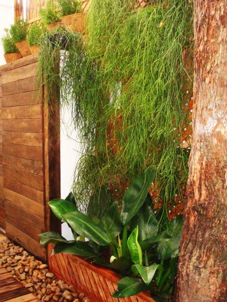 trelica de bambu para jardim vertical ? Doitri.com